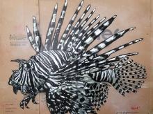 Lionfish by Quint