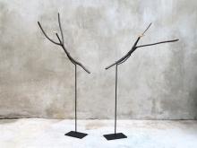 Wood_birds