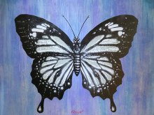 Butterfly by Quint