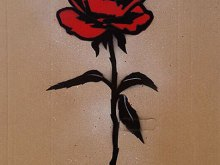 Red Rose on Cb by Quint