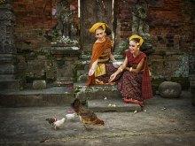 Feeding The Chicken by Yoga Raharja