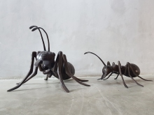 br007-br008_Bronze-Ant