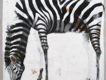 Nyoman-Suarnata_zebra1_12-Jan-2020